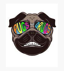 Pugs not Drugs Photographic Print