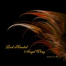 Red-Headed Angel Wing by Madeline M  Allen