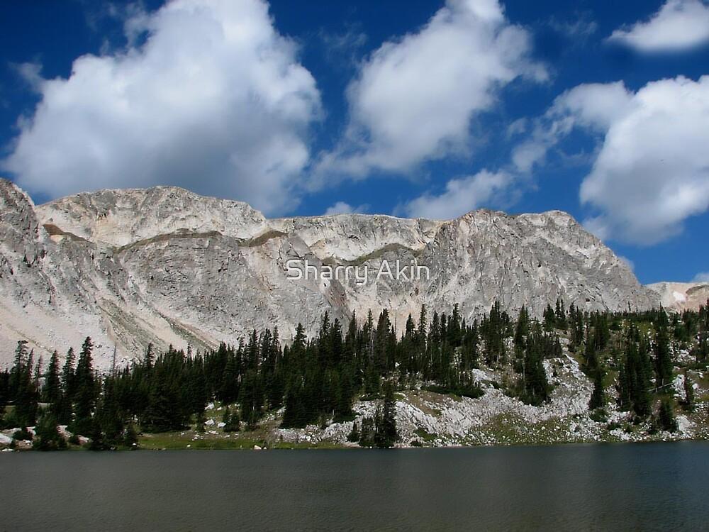 Snowy Range, Wyoming 2 by Sharry Akin
