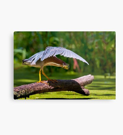 Oh There You Are ! Metal Print