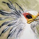 Secretary Bird by Amy-Elyse Neer