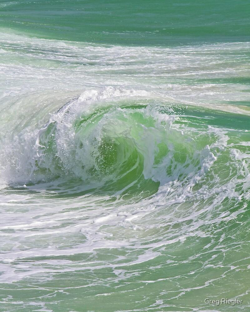 Rip Swirl by Greg Riegler