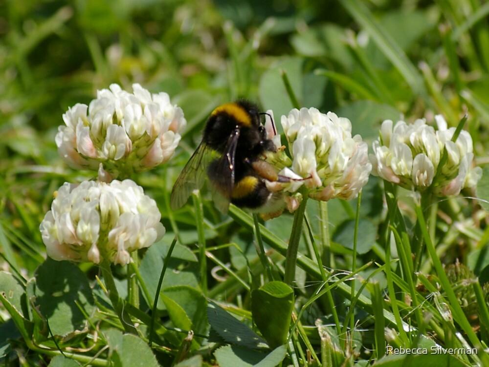 Bumble Bee by Rebecca Silverman