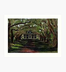 The Oak Alley Plantation Art Print