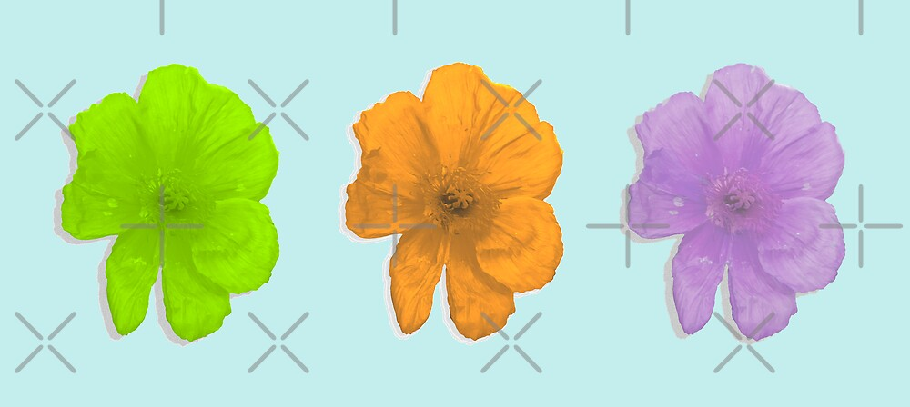 Pop Flowers by Rebekah  McLeod