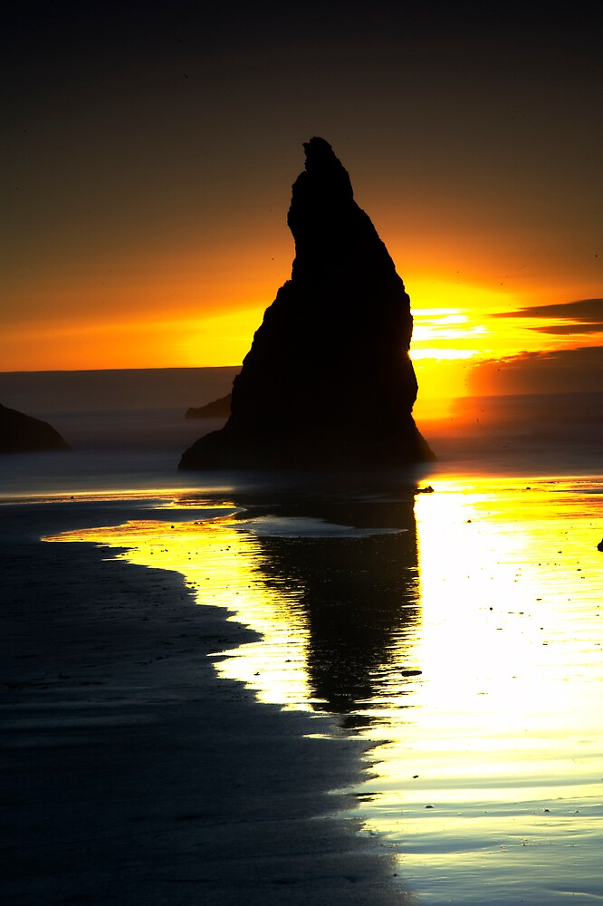 Oregon Coast at Sunset by vcall69