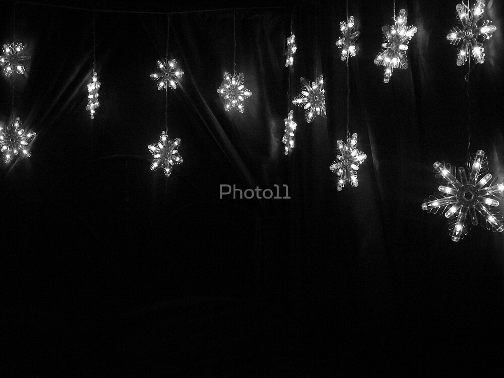 Snowflakes by Photo11
