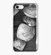 Shell Shocked iPhone Case/Skin