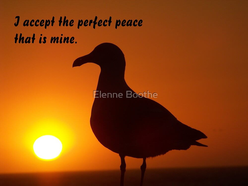 I ACCEPT by Elenne Boothe