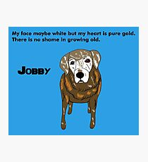 Jobby - Old dogs are the best Photographic Print