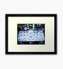 Flathead Framed Print