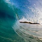Swimming in the surf with the fishes by Vince Gaeta