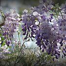 Garden Delights by Lozzar Flowers & Art