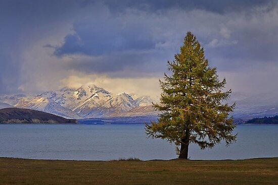 0512 Lake Tekapo - New Zealand by Hans Kawitzki