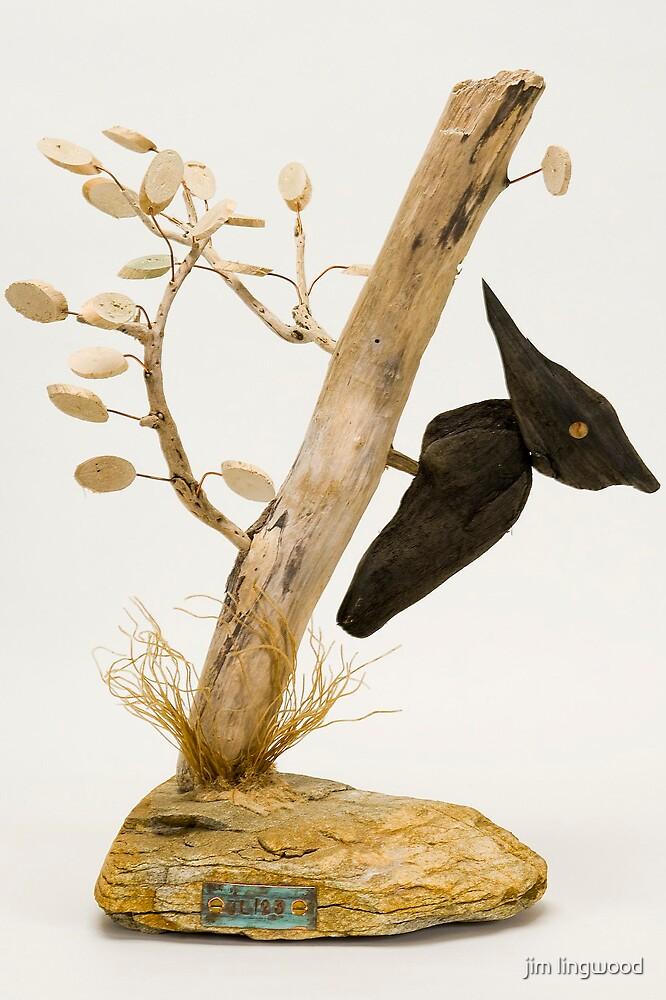 woodpecker by jim lingwood