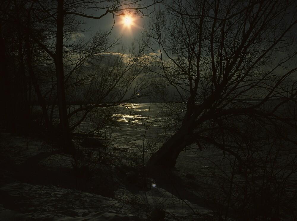 Ice Nine by bertspix