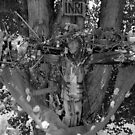 """Jesus on the Cross"" by David Lee Thompson"