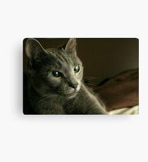 Get That Camera Out Of My Face  Canvas Print
