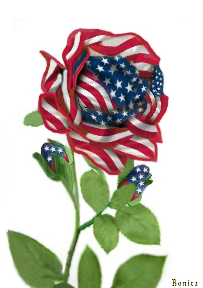 .♥➷♥•* Stars & Stripes Rose For 9-11 In Rememberance.♥➷♥•*¨ by ✿✿ Bonita ✿✿ ђєℓℓσ