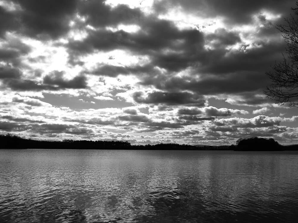 Wild Sky's by Alan Findlater
