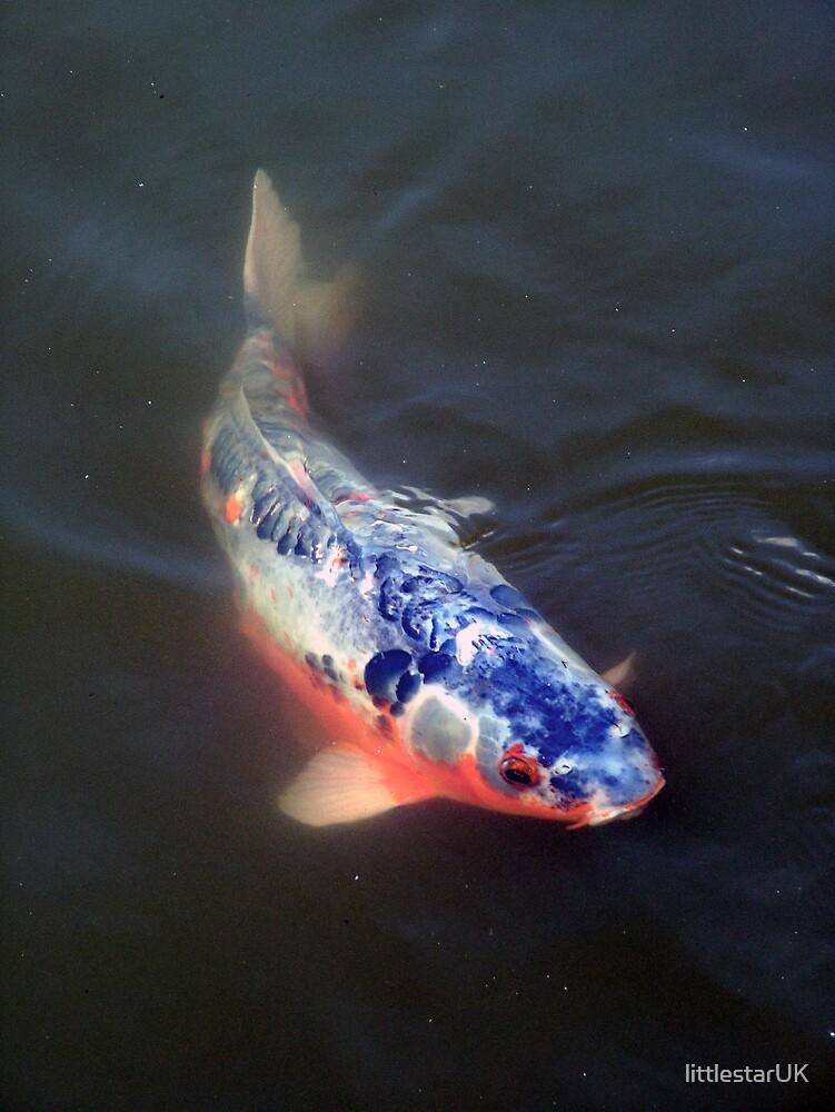 Sussex Fish by littlestarUK