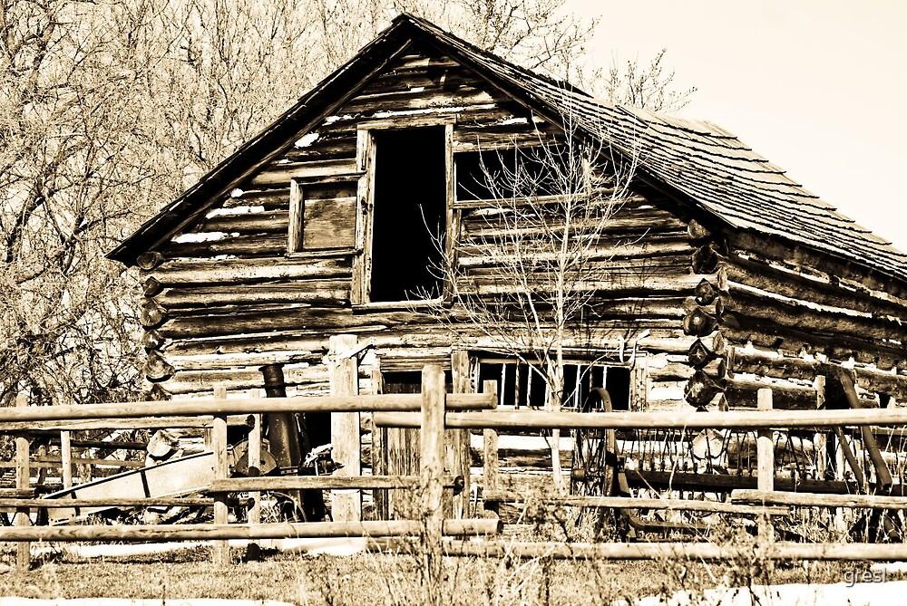 Old Cabin by gresl