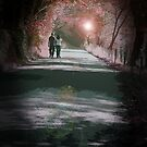 Walking Home by Colin Bentham