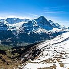 Grindelwald First Panorama by Imagericius