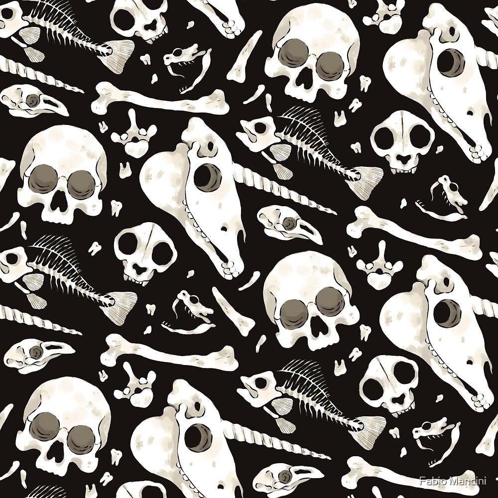 black Skulls and Bones - Wunderkammer by Fabio Mancini
