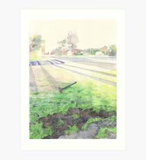 Evening Streetscape Art Print