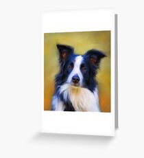 Taj - Border Collie Greeting Card