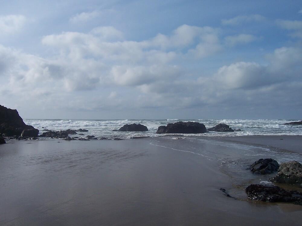 oregon coast by eprince28