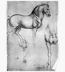 LEONARDO, HORSE, Drawing, Leonardo da Vinci, Study Of Horses Poster