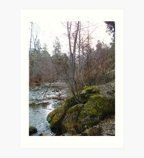 Bear Creek I Art Print