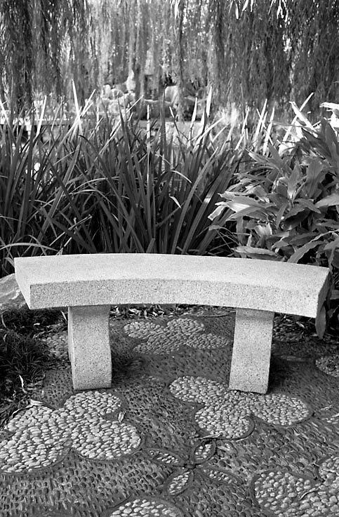 Stone Stool, Chinese Garden, Sydney by Dave Cheney