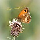 What a wonderful world Butterfly by BoChetwyn