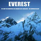 Everest and Hillary quote by beavo