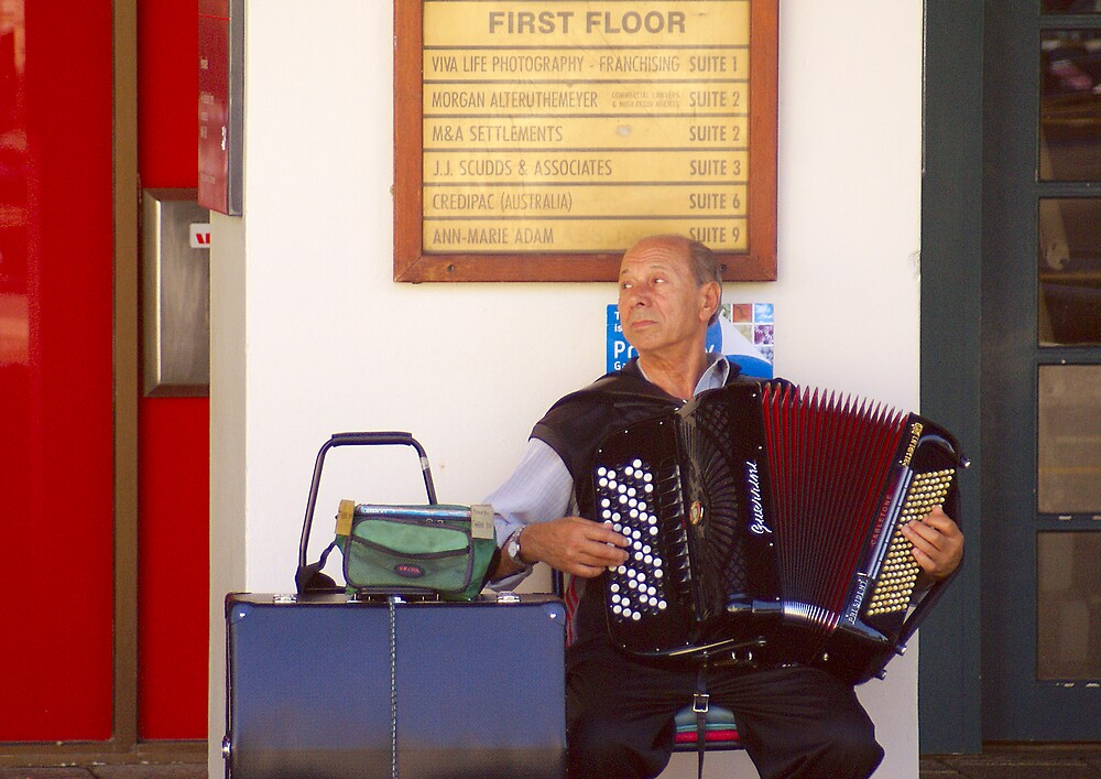 the accordion player by alistair mcbride