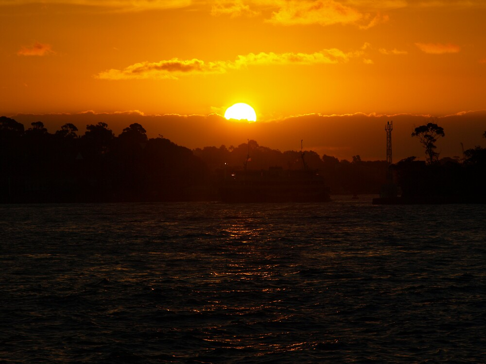 Sunset view from sydney harbour by yas74