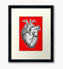 Heart, Anatomical, Drawing, Etching, Beat, Pulse Framed Print