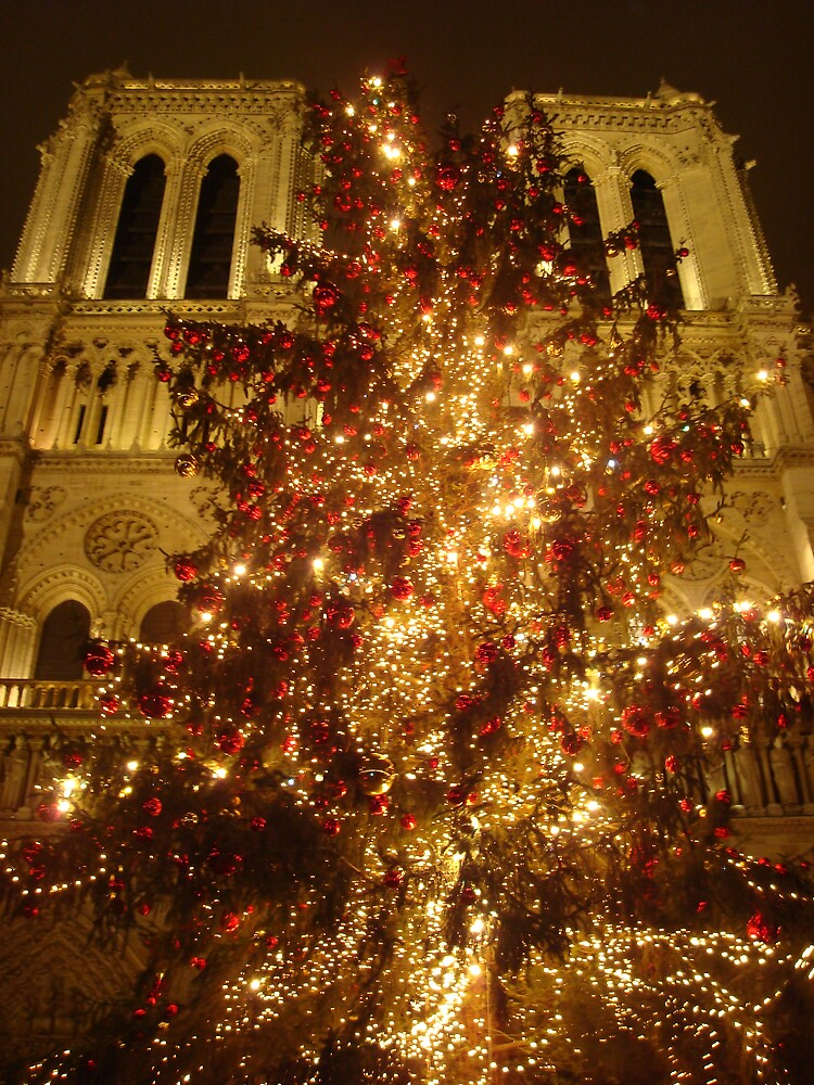 Le Notre Dame at Christmas by Nico3