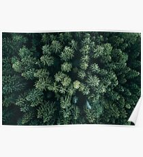 Forest Drone - Landscape Photography Poster
