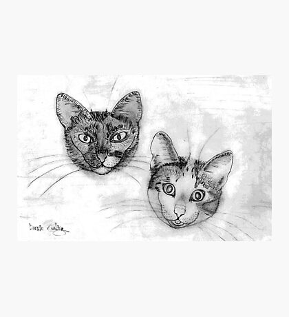My pencil drawing of Lillan and Grenadine Photographic Print