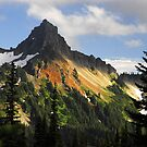 """Tatosh Mountains"" by David Lee Thompson"