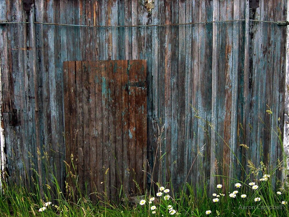 Weathered Door by Aaron Campbell