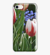 Canada 150 tulips. iPhone Case/Skin