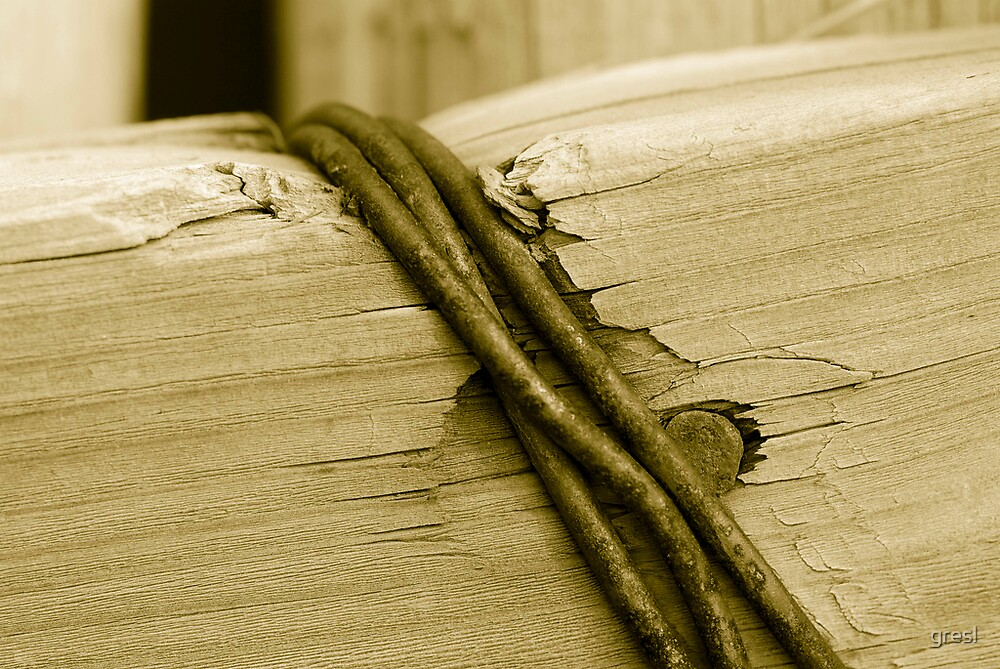 Banded Wood by gresl