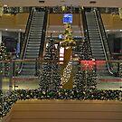 Dresden - Christmas lights by Arie Koene
