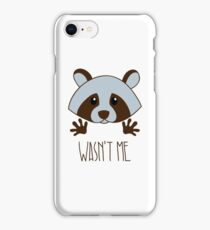 Little raccoon iPhone Case/Skin