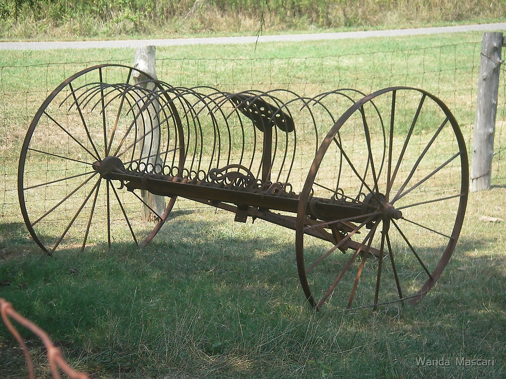 Hay Rake by Wanda  Mascari